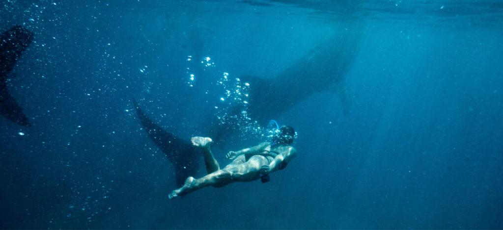 Scuba Diving at Koh Tang in Cambodia